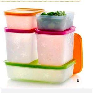 Tupperware Freezer Mates PLUS Simple Set